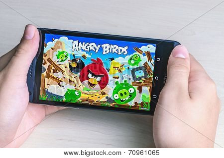 Angry Birds Computer Game Developed By Finnish Company Rovio Entertainment First Released In 2009