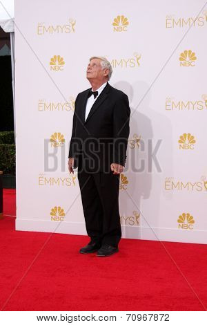 LOS ANGELES - AUG 25:  Robert Morse at the 2014 Primetime Emmy Awards - Arrivals at Nokia at LA Live on August 25, 2014 in Los Angeles, CA