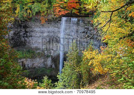 Tews Falls in Hamilton