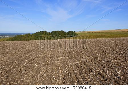Hillside Plowed Field