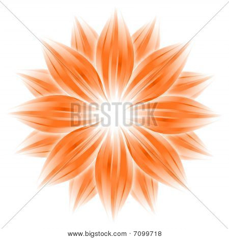 Abstract Orange Flower On White Background