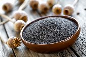 stock photo of opiate  - Poppy seeds with heads on a wooden table