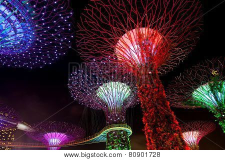 Dazzling Light Show At The Supertree Grove And Marina Bay In Singapore