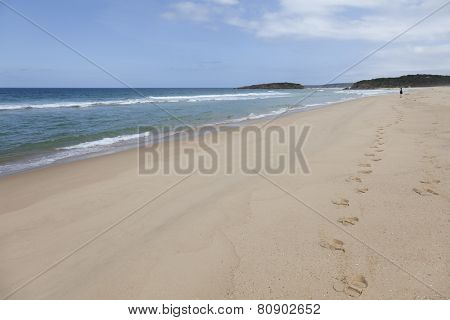Beach at the Mallacoota Inlet, Gippsland, Australia