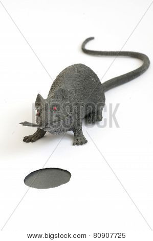 plastic toy mouse 3