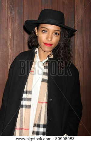 LOS ANGELES - JAN 22:  Remi Nicole at the Alexa Chung For AG Los Angeles Launch Party at a Private Location on January 22, 2015 in Beverly Hills, CA