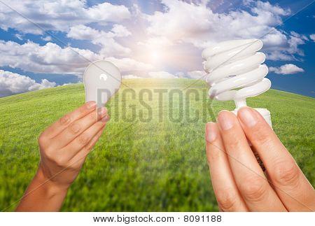Female Hands Holding Energy Saving And Regular Light Bulbs