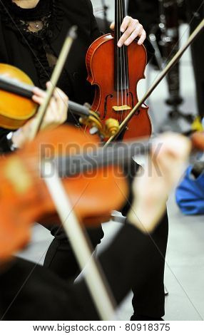 Violinists At An Orchestra Recital Or Concert
