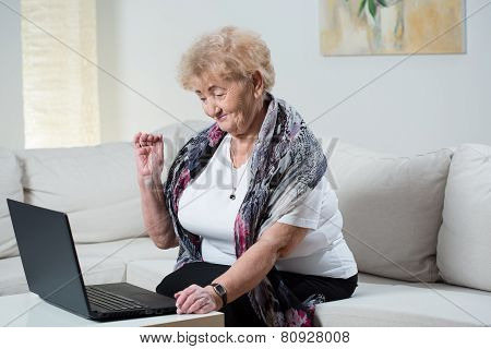 Modern Grandma Talking On The Skype