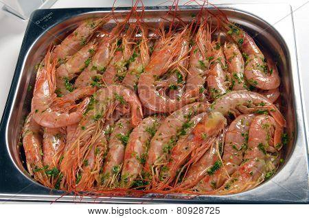 Freshly Cooked Prawns - Shrimp