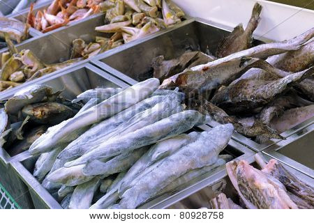 Frozen Fish In The Fish Shop