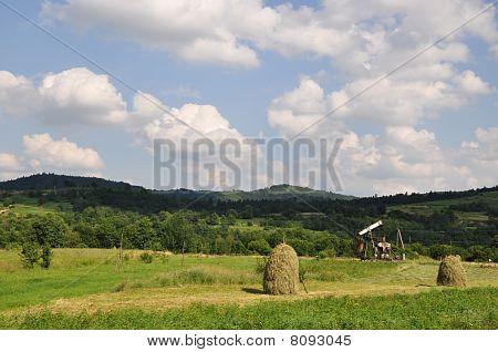 Summer in foothills.