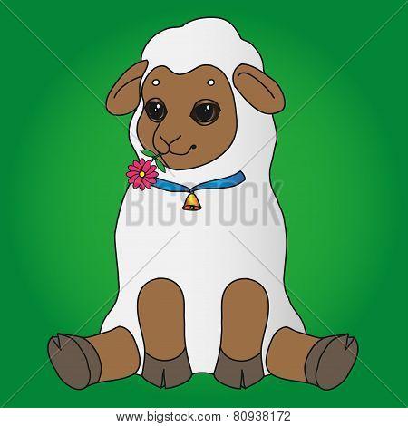 sheep sits