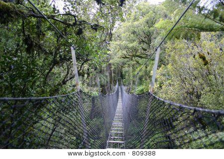 Stewart Island bridge