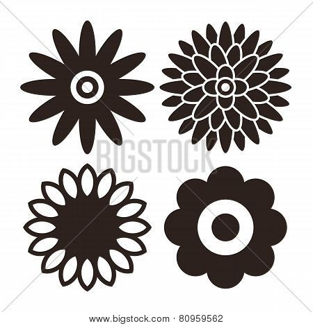 Flower Icon Set - Gerbera, Chrysanthemum, Sunflower And Daisy