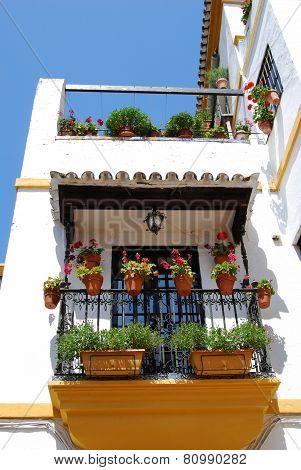 Spanish balcony, Seville.