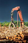 stock photo of lumber  - Loading machine at work at lumber mill - JPG