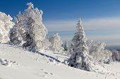 foto of ural mountains  - Winter snow - JPG