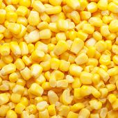 pic of sweet-corn  - bright yellow tinned sweet corn square background - JPG