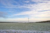stock photo of geese flying  - Flock of geese flying over a snowy field in winter - JPG