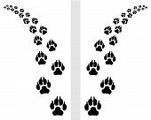 foto of dog tracks  - Trail left and right of footstep of dog - JPG