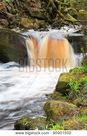 Padsey Gorge