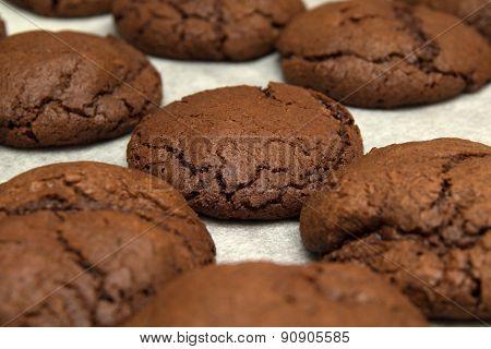 Freshly Made Choocolate Cookies