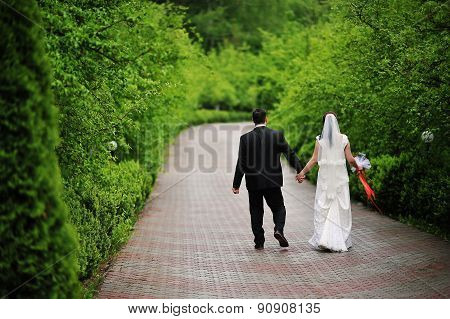 Wedding Couple At The Green Alley