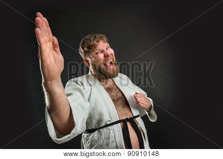 Fat karate fighter