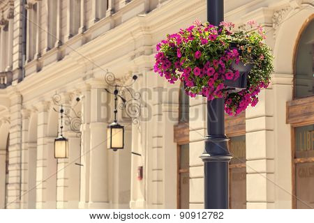 Lamp post with pink flowers