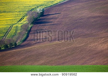 Geometric colorful fields landscape - countryside hills, agriculture concept for background or wallpaper