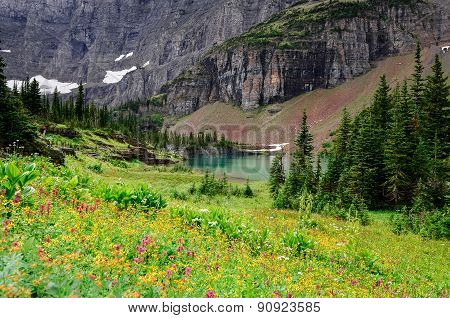 Landscape View Of Alpine Meadow In Glacier Np Mountains