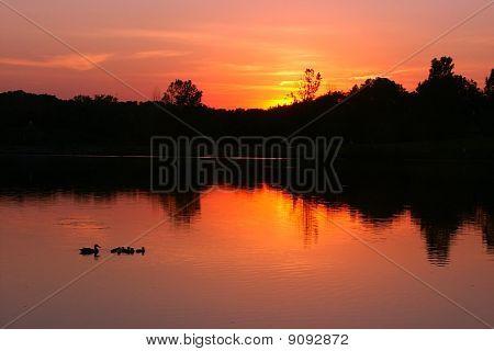 Bauman Park Lake - Illinois