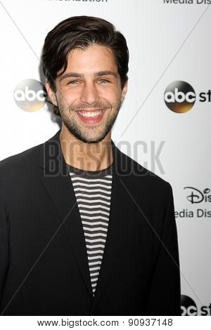 LOS ANGELES - MAY 17:  Josh Peck at the ABC International Upfronts 2015 at the Disney Studios on May 17, 2015 in Burbank, CA