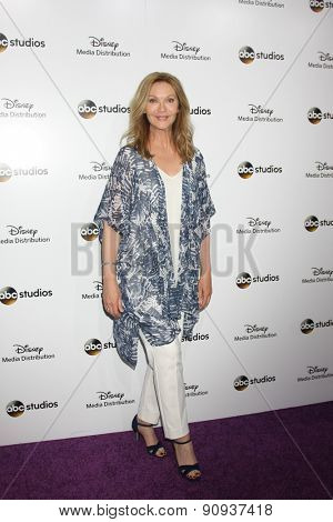 LOS ANGELES - MAY 17:  Joan Allen at the ABC International Upfronts 2015 at the Disney Studios on May 17, 2015 in Burbank, CA