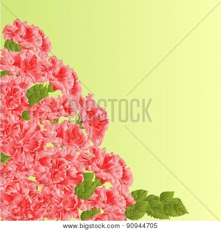Flowering Shrub Pink Hibiscus Vector