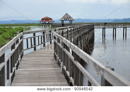 Bridge on the lake in national park  (Ramsar Site), Sam Roi Yod National Park, Prachuap Khiri Khan,