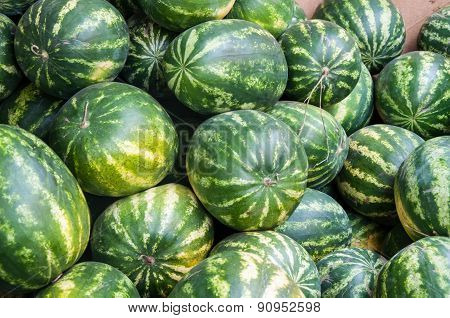 Watermelon Is Sold At The Bazaar