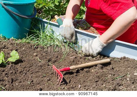 Digging Up Weeds