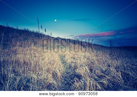 Vintage Photo Of Withered Grassland In Calm Countryside