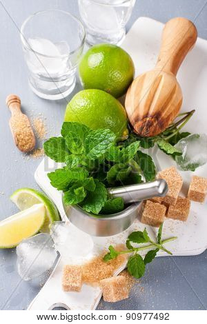Ingredients for making mojitos