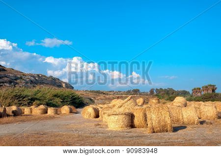 Summer Field Scenery With Haystack. Agriculture Concept.