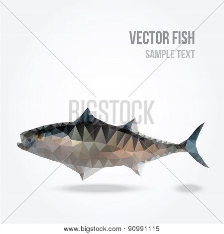 Polygonal Silhouette Of Tuna Fish, Modern Mesh Lowpoly Design