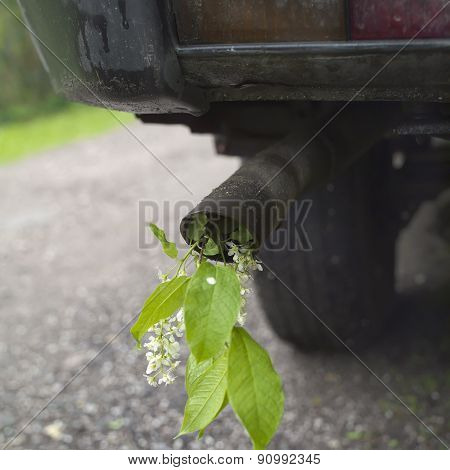 Car Exhaust Pipe And Flower
