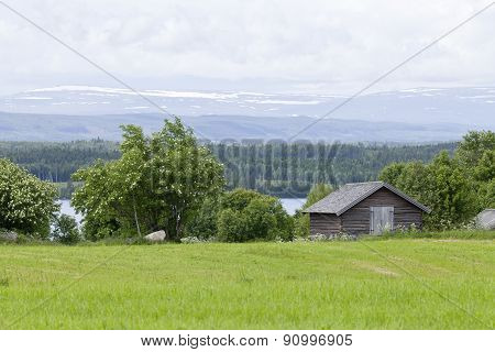 Log, timber barn on the farmland, landscape.