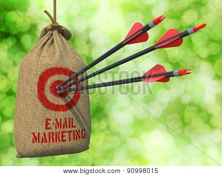 E-mail Marketing - Arrows Hit in Red Target.