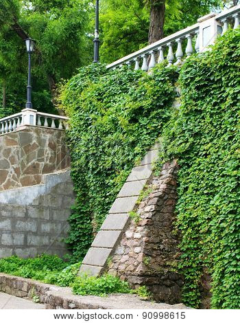 Old Stone Wall With Ivy