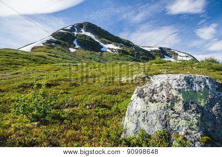 Norwegian Mountain Peak And Alpine Foliage
