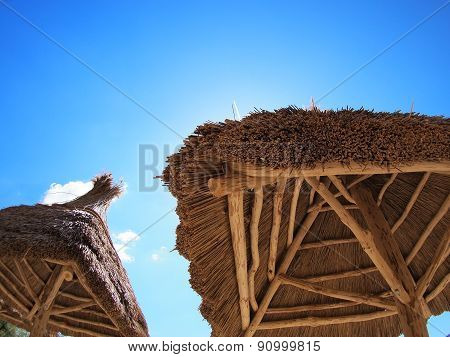 Roof Canopy Of Reeds