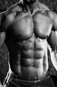 picture of abs  - Close Up Of A Perfect Abs  - JPG